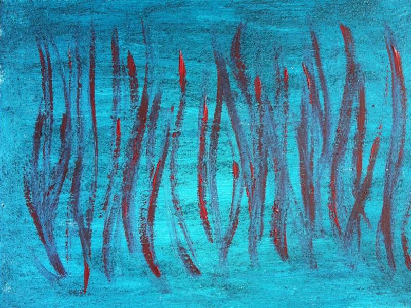 Coralli nel blu